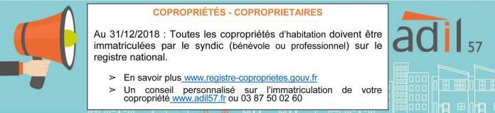Prop comm registre immatriculation 1